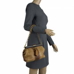 Prada Beige Ombre Python Frame Chain Shoulder Bag 85160