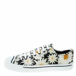 Burberry Black Floral Print Canvas Kingly Low Top Sneakers Size 43.5 199072