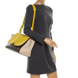Celine Tri Color Leather Medium Trapeze Bag 186708