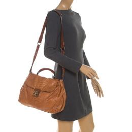Chloe Tan Python Elsie Top Handle Bag 208819