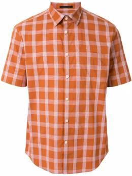 D'Urban рубашка с короткими рукавами D3966TM15067