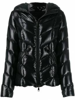 Moncler feather down hooded jacket 4691505C0065