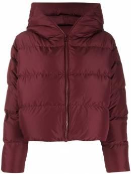 Bacon Cloud hooded puffer jacket CLOUD