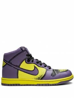 Nike кроссовки Dunk High 1 Piece Premium 318998751