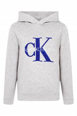 Серое худи с бело-синей надписью Calvin Klein Kids 2815163916