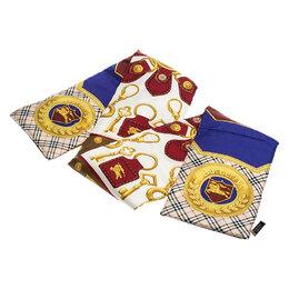 Burberry Multicolor Printed Silk Puffer Scarf 246973