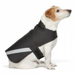Stutterheim SSENSE Exclusive Black PVC Lightweight Dog Raincoat