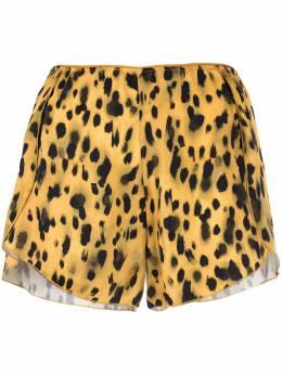 Anine Bing шорты Jade с леопардовым принтом AB3101617