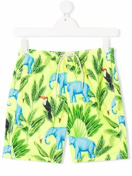 Mc2 Saint Barth Kids TEEN tropical print swim trunks JEANLIGHTING