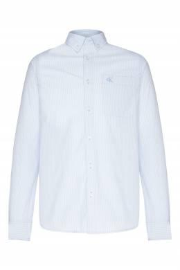 Голубая рубашка в полоску Calvin Klein 596189454