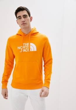 Худи The North Face T0A0TEECL