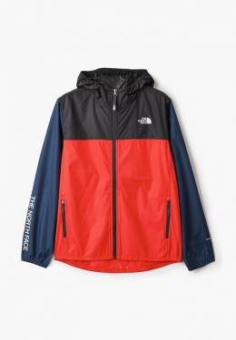Ветровка The North Face TA3NKGYH4