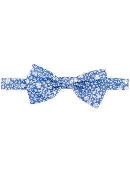 Canali галстук-бабочка с цветочным принтом 02HS02758