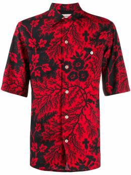 Alexander McQueen рубашка Ivy Creeper с принтом 599237QOR63