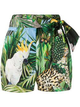 Dolce&Gabbana шорты с принтом FTBUOTGDU55