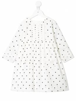 Velveteen платье Marta в мелкую точку S20G07007GBCV