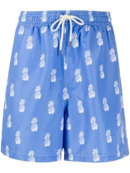 Polo Ralph Lauren плавки-шорты с принтом 710787075