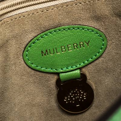 Mulberry Green Leather Small Lily Shoulder Bag 293753 - 8