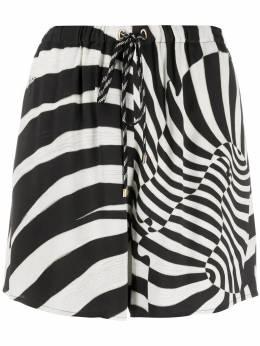 Roberto Cavalli шорты с зебровым принтом KWT2077QV38