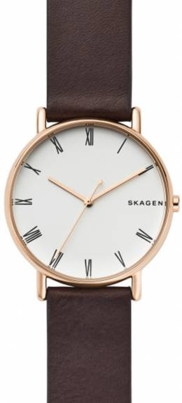 Часы Skagen SKW6493 900674