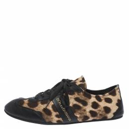 Dolce&Gabbana Brown Leopard Print Canvas And Black Leather Lace Up Sneakers Size 38 299407