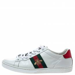 Gucci White Leather Ace Web Detail Low Top Sneakers Size 37.5 301287
