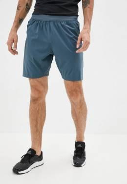Шорты спортивные Adidas GC8200