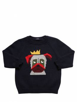 Dog Intarsia Cotton Knit Sweater Il Gufo 72I8ZC013-NDk10