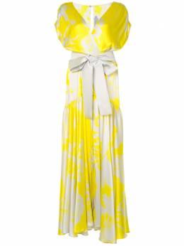 Silvia Tcherassi платье макси с абстрактным принтом 7701227011260