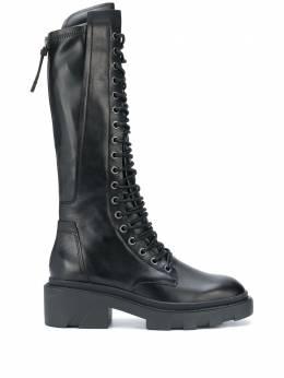 Ash сапоги в стиле милитари на шнуровке 133683MADMAX