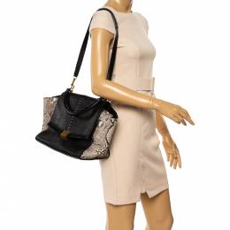 Celine Multicolor Leather and Python Medium Trapeze Bag 347538