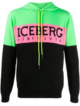 Iceberg худи с логотипом A0207010