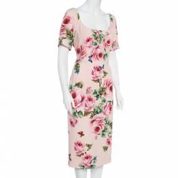 Dolce&Gabbana Pink Floral Printed Crepe Sheath Dress L 360029