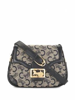 Celine Pre-Owned сумка на плечо pre-owned WB1943CLNEBG