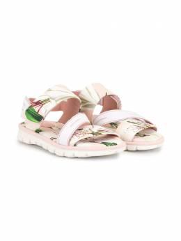 Dolce & Gabbana Kids сандалии с цветочным принтом D10873AA737