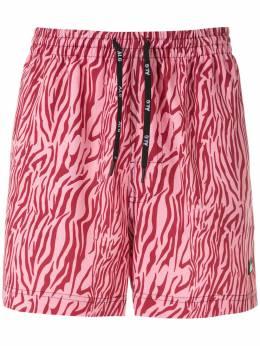 Alg шорты Oxford Zebra 0120055