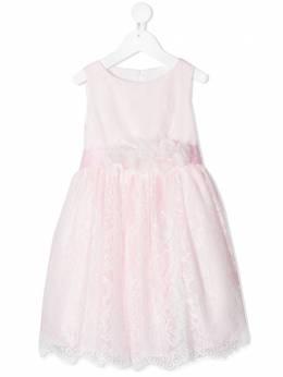 Colorichiari кружевное платье FB1058514045