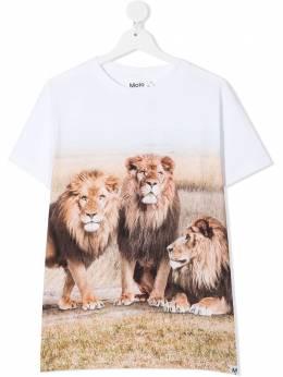 Molo футболка Road Lions 1S21A228