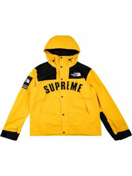 Supreme парка Arc Logo Mountain из коллаборации с The North Face SU9590