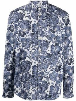 Hydrogen рубашка с цветочным принтом 280506