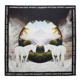 Burberry Multicolor Silk Dreamscape Print Scarf 8037520