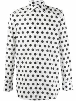 Gabriele Pasini рубашка в горох G17ITALGP17226