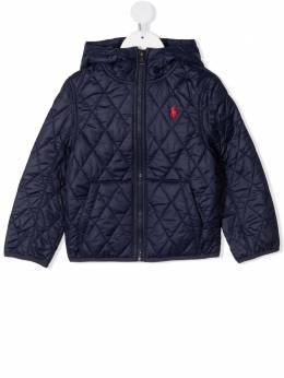 Ralph Lauren Kids Polo Pony quilted jacket 321797760